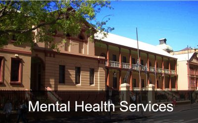 NAPP backs NSW Parliamentary Inquiry into Mental Health Services