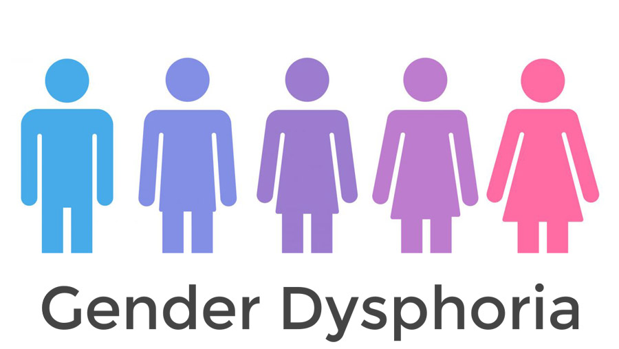 Gender Dysphoria – National Enquiry
